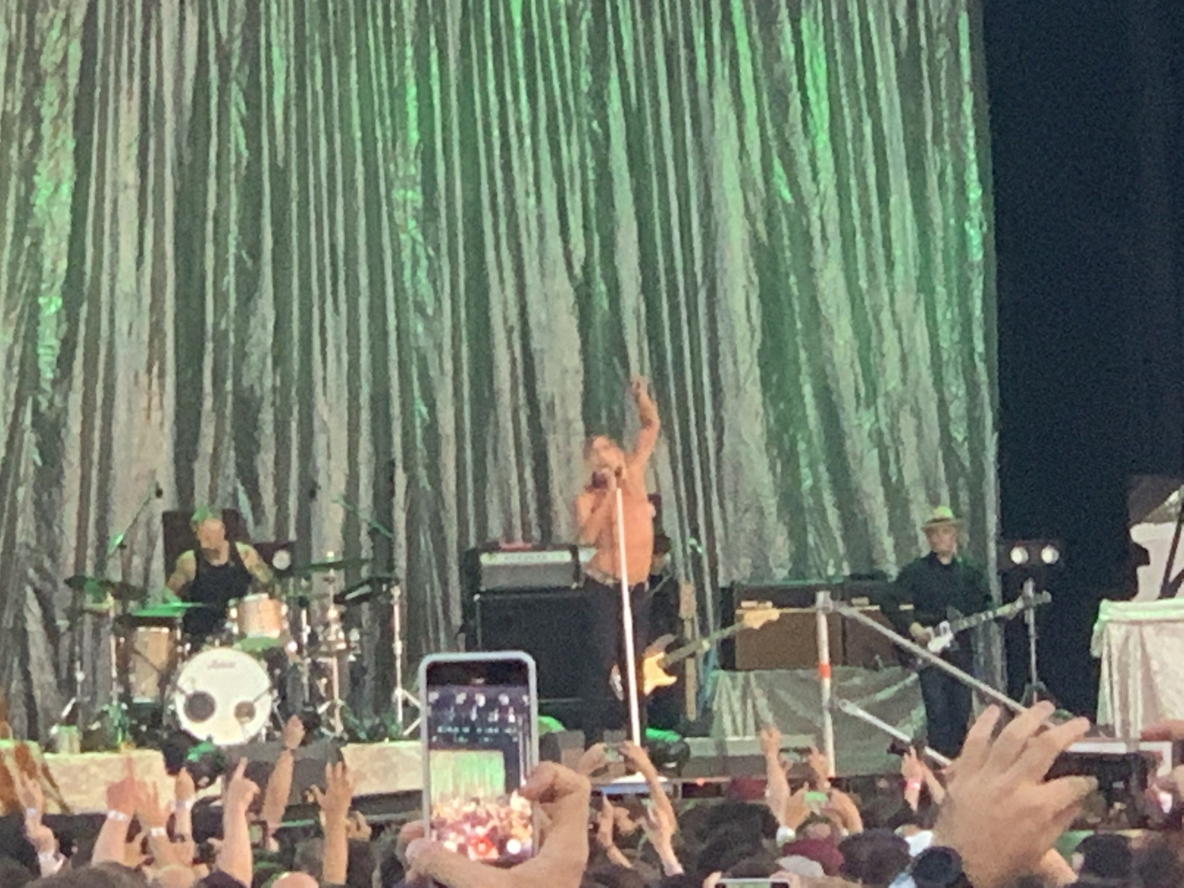 Legendary punk Iggy Pop during an enthralling set on the Communidad de Madrid Stage.